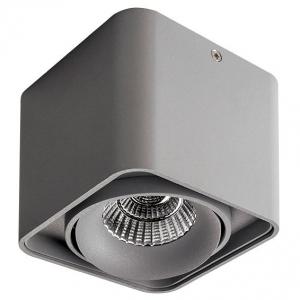 Накладной светильник Lightstar Monocco 052119-IP65