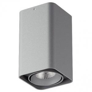 Накладной светильник Lightstar Monocco 052139-IP65