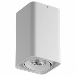 Накладной светильник Lightstar Monocco 052336-IP65