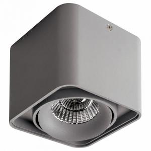 Накладной светильник Lightstar Monocco 212519