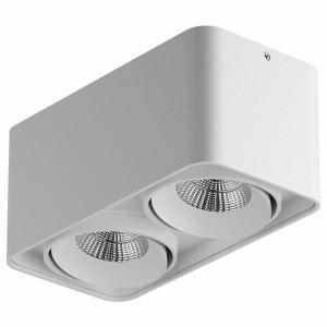 Накладной светильник Lightstar Monocco 212526