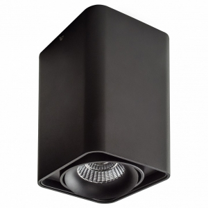 Накладной светильник Lightstar Monocco 212537