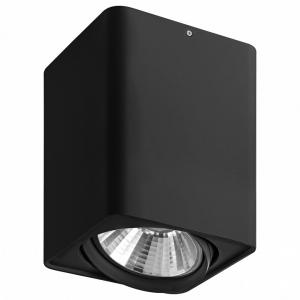 Накладной светильник Lightstar Monocco 212637