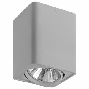 Накладной светильник Lightstar Monocco 212639