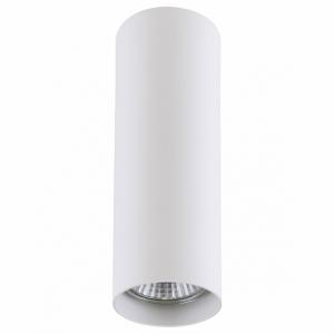 Накладной светильник Lightstar Rullo 214496