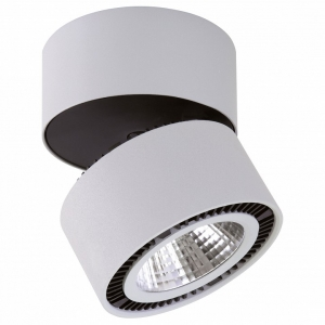 Светильник на штанге Lightstar Forte Muro LED 214830