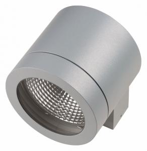 Накладной светильник Lightstar Paro 350619