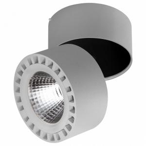Светильник на штанге Lightstar Forte 381393
