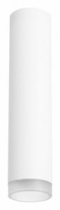 Накладной светильник Lightstar Rullo R49630
