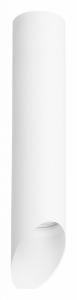Накладной светильник Lightstar Rullo R49636