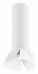 Светильник на штанге Lightstar Rullo R496436
