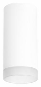 Накладной светильник Lightstar Rullo R648680