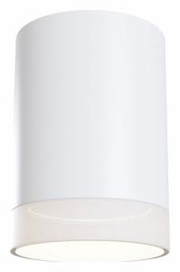 Накладной светильник Maytoni Pauline C008CW-01W