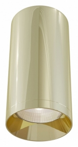 Накладной светильник Maytoni Alfa C010CL-01G