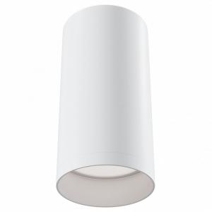 Накладной светильник Maytoni Alfa C010CL-01W