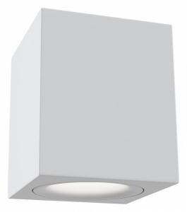 Накладной светильник Maytoni Alfa C013CL-01W