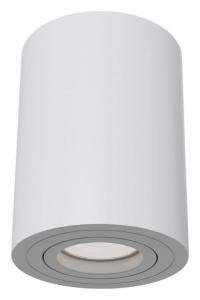 Накладной светильник Maytoni Alfa C016CL-01W