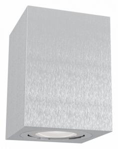 Накладной светильник Maytoni Alfa C017CL-01S