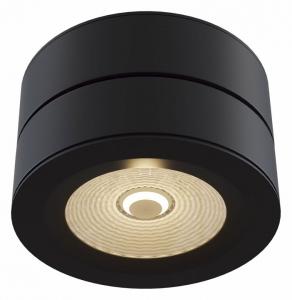 Накладной светильник Maytoni Treviso C023CL-L20B