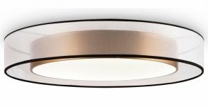 Накладной светильник Freya Zoticus FR6005CL-L48G
