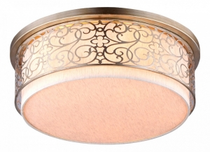 Накладной светильник Maytoni Venera H260-05-N