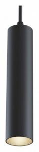 Подвесной светильник Maytoni Track lamps TR016-2-12W4K-B