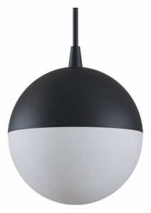 Подвесной светильник Maytoni Track lamps TR018-2-10W3K-B
