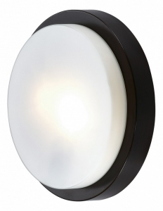 Накладной светильник Odeon Light Holger 2744/2C