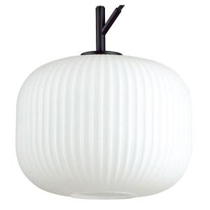 Подвесной светильник Odeon Light Roofi 4753/1