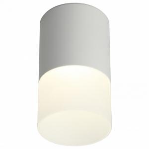 Накладной светильник Omnilux Ercolano OML-100009-05