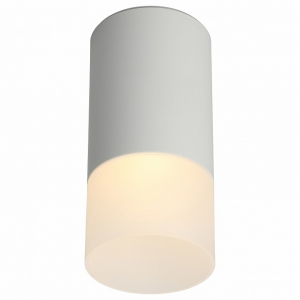 Накладной светильник Omnilux Lucido OML-100609-01