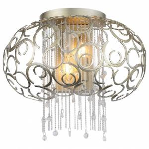 Накладной светильник ST-Luce Dolcima SL1101.201.02