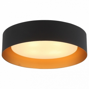 Накладной светильник ST-Luce Chio SL392.422.04