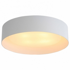 Накладной светильник ST-Luce Chio SL392.502.04