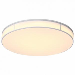 Накладной светильник ST-Luce Fella SL417.512.01