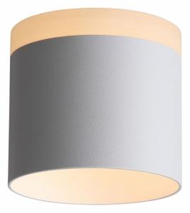 Накладной светильник ST-Luce Panaggio ST102.502.12