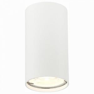 Накладной светильник ST-Luce Simplus ST110.507.01