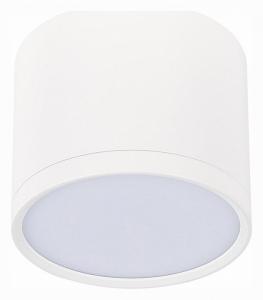 Накладной светильник ST-Luce Rene ST113.532.09